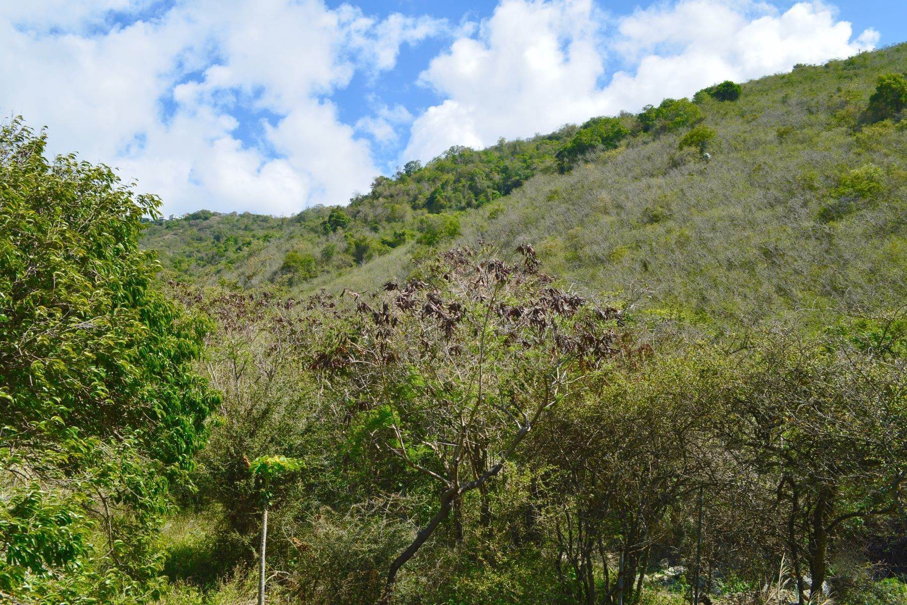 3. Land for Sale at Hannah, Tortola British Virgin Islands