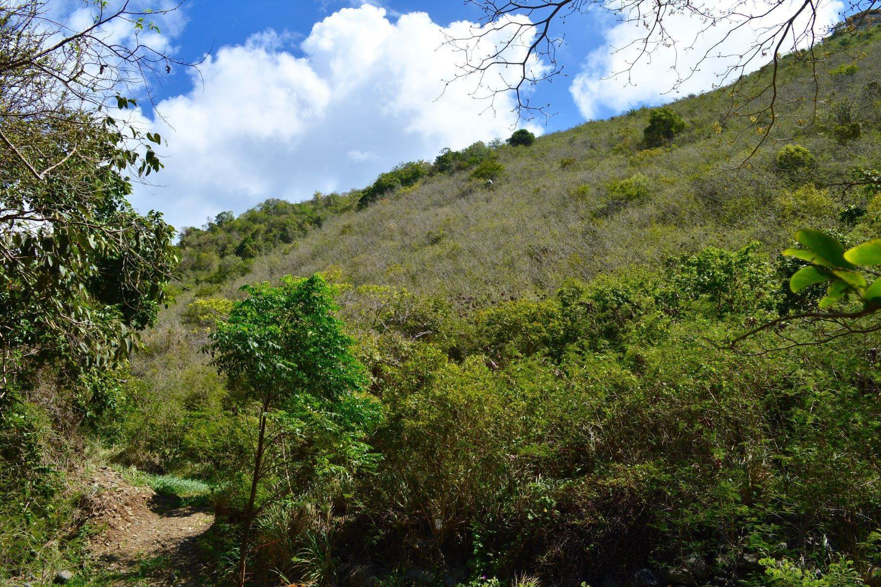 2. Land for Sale at Hannah, Tortola British Virgin Islands