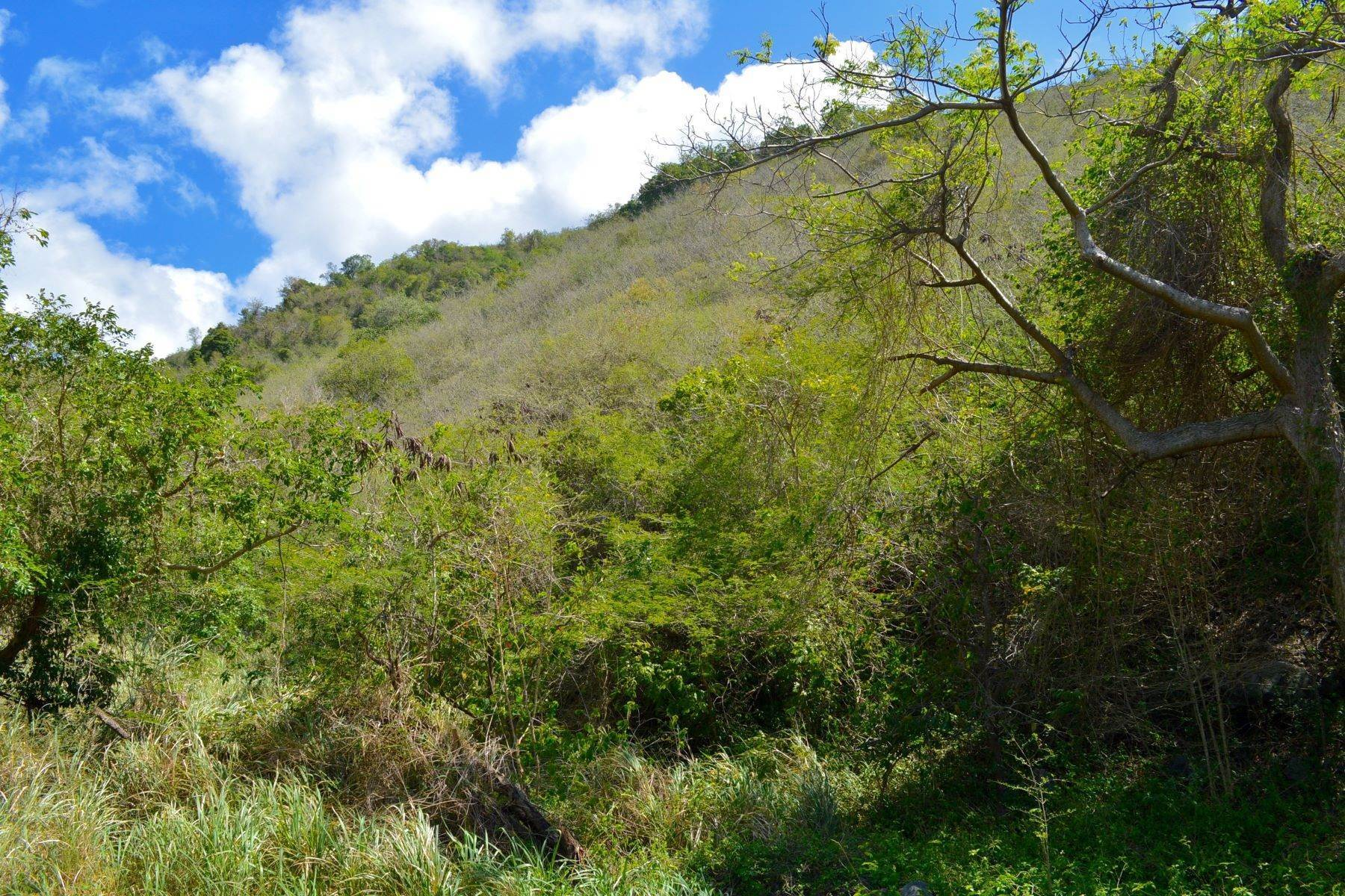 Land for Sale at Hannah, Tortola British Virgin Islands