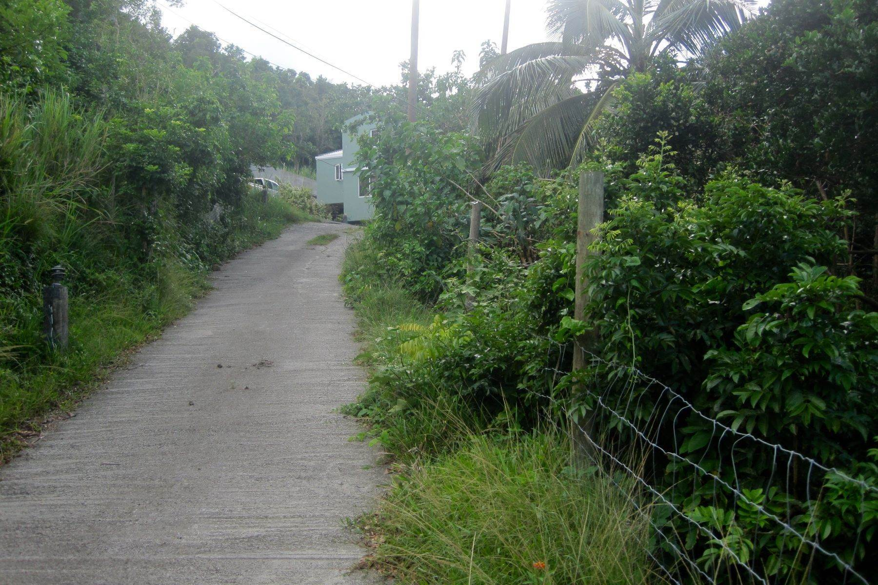 2. Land for Sale at Brewers Bay, Tortola British Virgin Islands