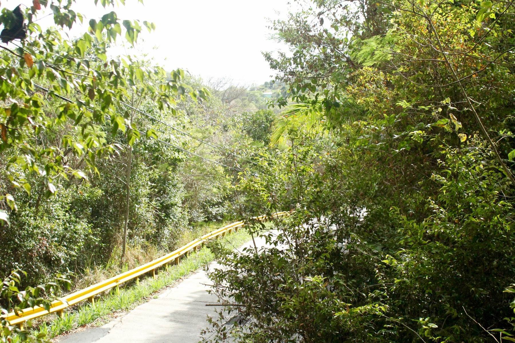 3. Land for Sale at Sage Mountain, Tortola British Virgin Islands